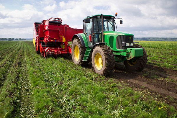 В Ростовской области фермерам выделят 10 млн рублей после обстрелов с Украины