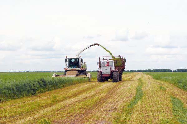 Минсельхоз отмечает положительные тенденции в области сельхозпроизводства