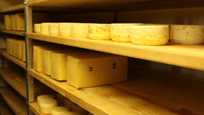 Специалист: РФ сумеет на100% отказаться отиностранных сыров, мяса иколбасы