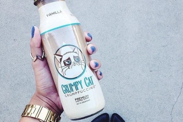 Хозяйка Grumpy Cat отсудила $710 тысяч у кофейни за нарушение рекламного контракта