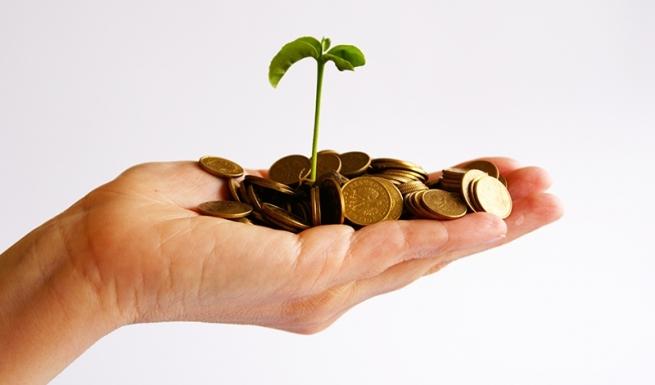 Малый бизнес все больше уходит «втень», заявили вСчетной палате