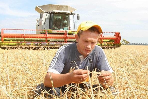 Фермерское хозяйство в Мирина