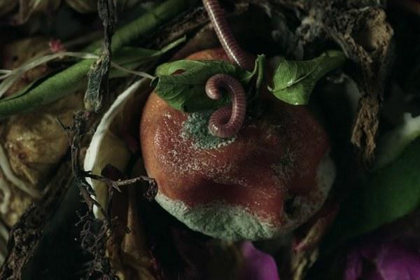 Etat Libre d'Orange презентовали парфюм из мусора и червей