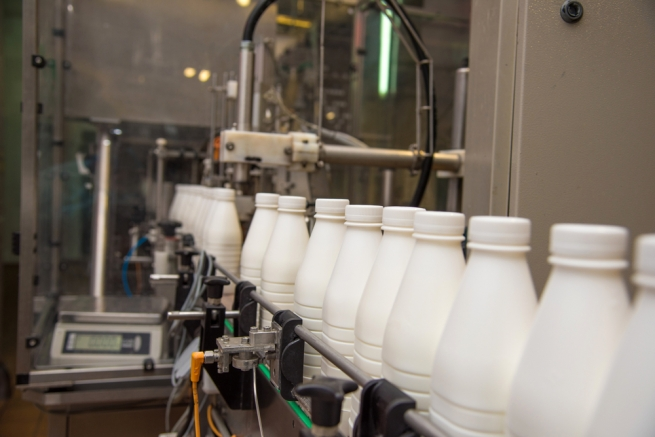 Россия сняла запрет на ввоз «Савушкина продукта»