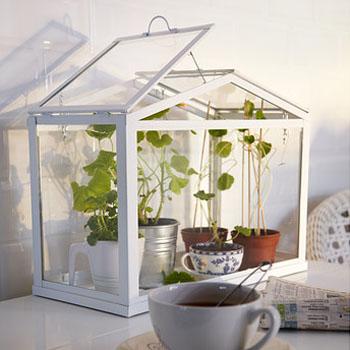 Хранения зерна в домашних условиях