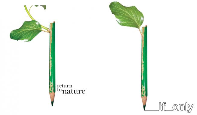 Американские студенты придумали проращиваемый карандаш