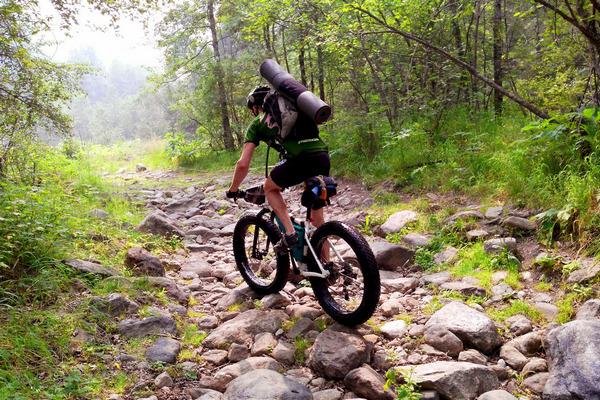 Спрос на велосипеды к летнему сезону вырос почти вдвое