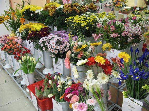 Около ста цветочных магазинов Подмосковья работали с нарушениями
