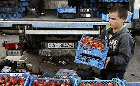 Россельхознадзор просит Белоруссию временно отказаться от транзита продуктов через РФ
