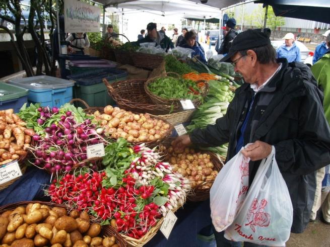 Чили планирует увеличить поставки фруктов, овощей и мяса в РФ