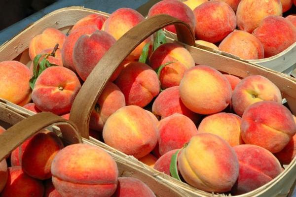 В Кирове уничтожили почти тонну литовских персиков
