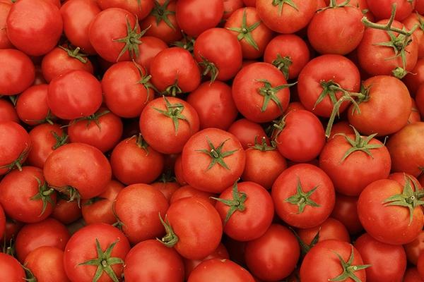 «Эко-культура» может заняться выпуском овощных соков