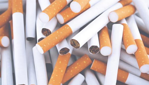табачные изделия образовательное учреждение