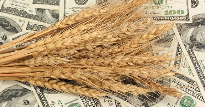 В топ-3 импортеров российских зерновых вошел Вьетнам