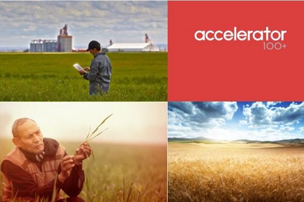 AB InBev запускает глобальный стартап для поиска решений экологических проблем