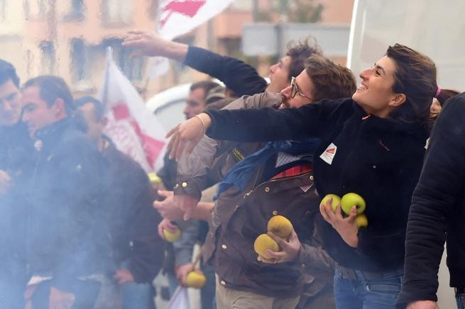 Французские фермеры проведут акции протеста по всей стране