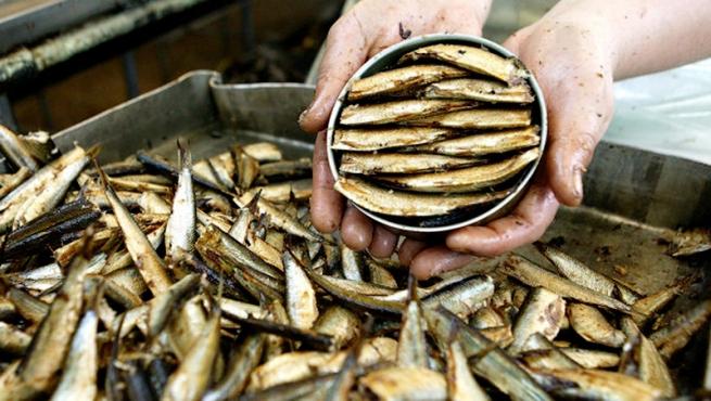 Metro и «Глобус» не видят интереса к рыбной продукции из Прибалтики