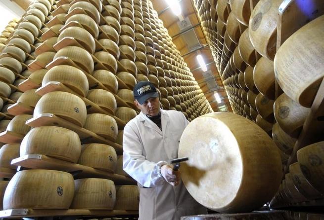В России хотят уничтожить 80% сыра по примеру санкционных товаров