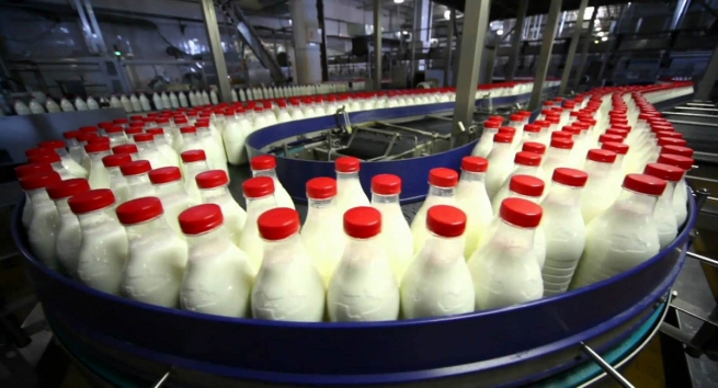 Минсельхоз предложил запретить растительные жиры во всех молочных продуктах