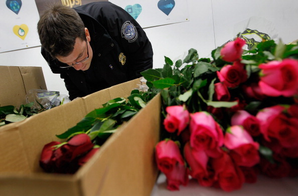 Россия запретит ввоз цветов из восьми стран