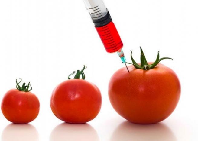 В России ввели запрет на ГМО