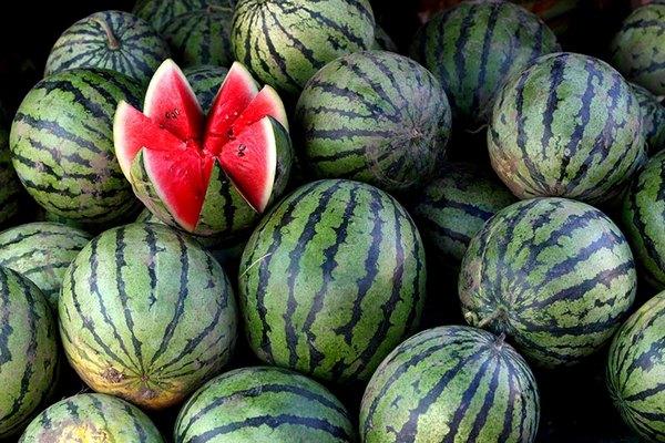 Роскачество: «нитратные» арбузы не обнаружены