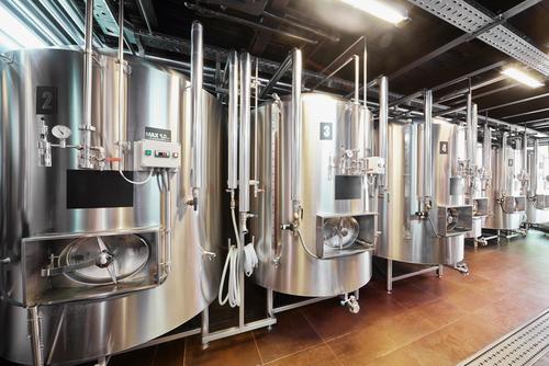 Медведева попросили освободить мини-пивоварни от ЕГАИС