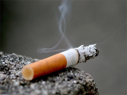 Во Франции за покупку табака в интернет-магазине грозит 5 лет тюрьмы