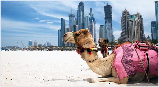 Арабские Эмираты запретят повышать цены в месяц Рамадан