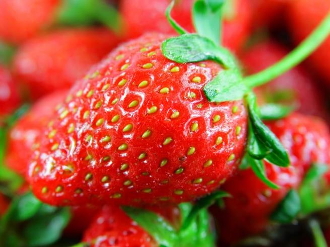 На московском рынке обнаружены запрещенные фрукты