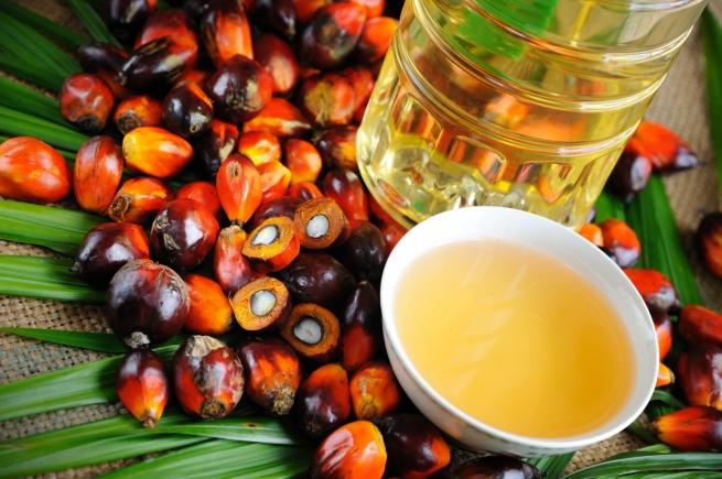 Россия увеличила импорт пальмового масла на 24%