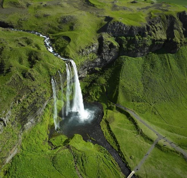 В «Азбуке Вкуса» появилась исландская ягнятина
