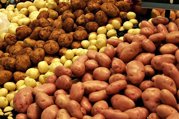 Россельхознадзор опроверг сообщения о запрете на посадку картошки для личных нужд