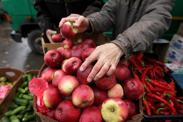 Россельхознадзор введет уведомления для реэкспорта овощей и фруктов из ЕС