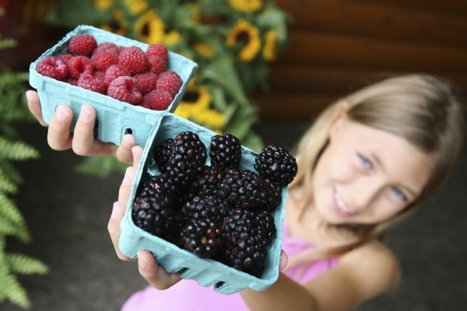 Столичные власти отказали фермерам в создании рынка биопродуктов