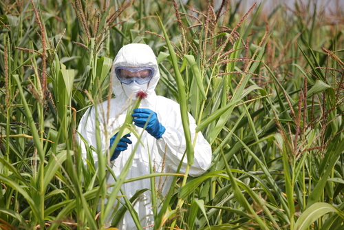 Владимир Путин подписал закон о запрете на поставку ГМО-продукции в РФ